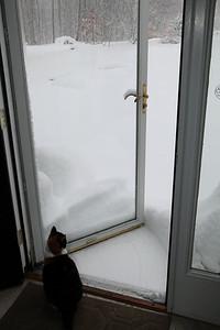 Winter 2010-2011-jlb-01-12-11-5868