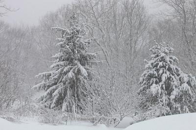 Winter 2010-2011-jlb-01-12-11-5883