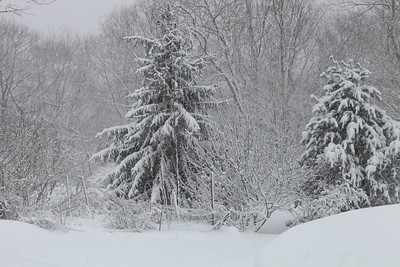 Winter 2010-2011-jlb-01-12-11-5877