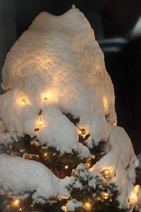 Winter 2010-2011-jlb-01-07-11-5545