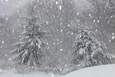 Winter 2010-2011-jlb-01-12-11-5884