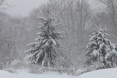 Winter 2010-2011-jlb-01-12-11-5878
