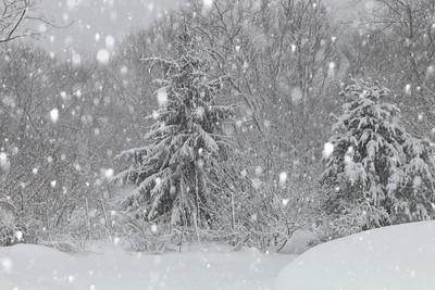 Winter 2010-2011-jlb-01-12-11-5876