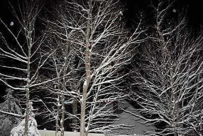 Winter 2010-2011-jlb-01-07-11-5556