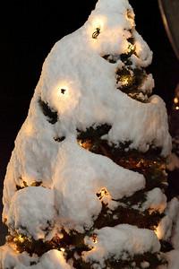 Winter 2010-2011-jlb-01-07-11-5546