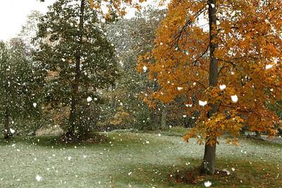 Snow-jlb-10-29-11-0574