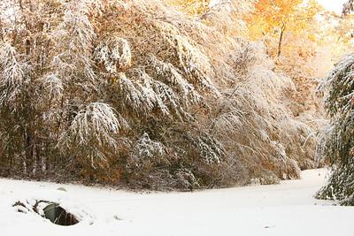 Snow-jlb-10-30-11-8613