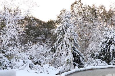 Snow-jlb-10-30-11-8599
