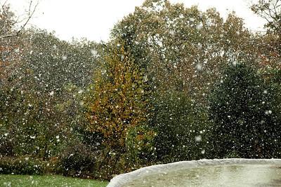 Snow-jlb-10-29-11-0563
