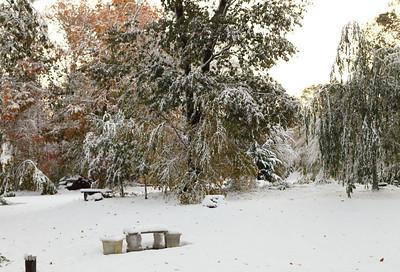 Snow-jlb-10-30-11-8602