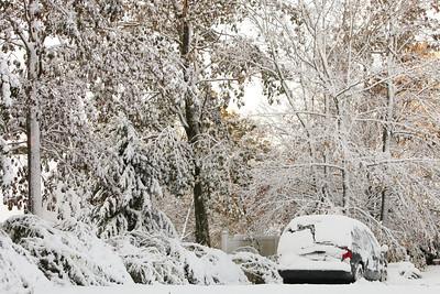 Snow-jlb-10-30-11-8614
