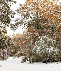 Snow-jlb-10-30-11-8612