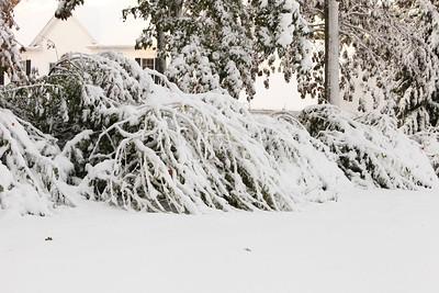 Snow-jlb-10-30-11-8620