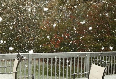 Snow-jlb-10-29-11-0577
