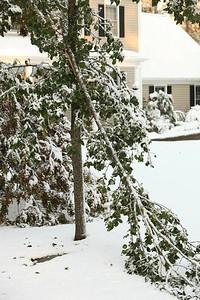 Snow-jlb-10-30-11-8615