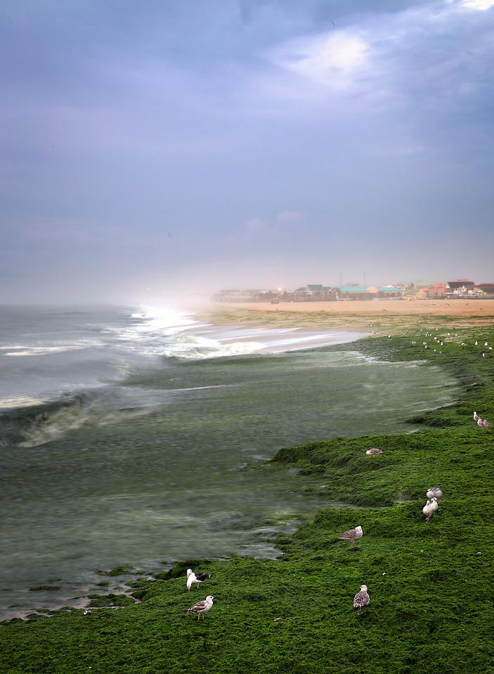 Point Pleasant Shore