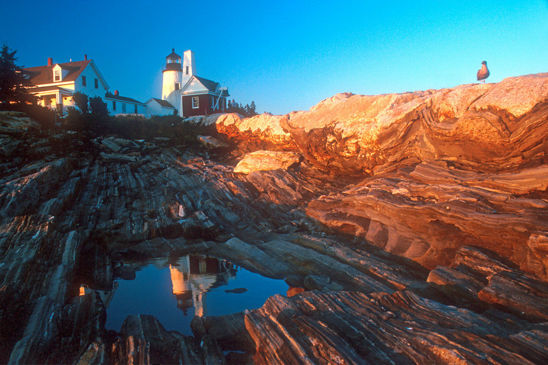 LH003<br /> Evening at Pemaquid<br /> The setting sun casts a warm light on the rock at Pemaquid Point, Maine