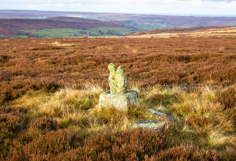 Botton Cross - Danby High Moor North York Moors UK 2019