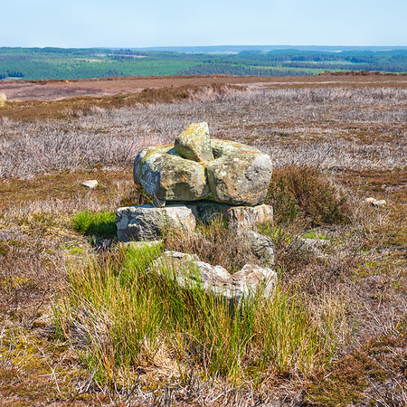 Redman Cross - North York Moors UK 2020