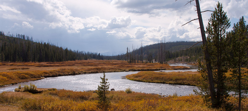 One of many rivers running through Yellowstone NP.