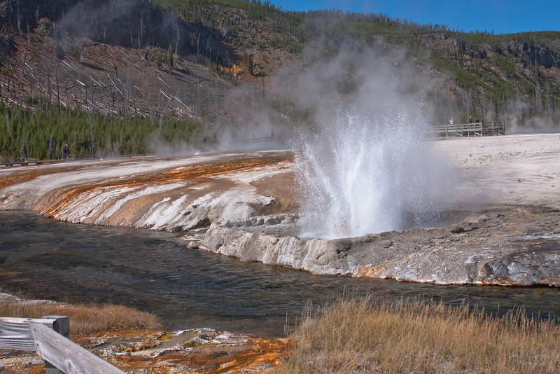 Cliff Geyser erupting