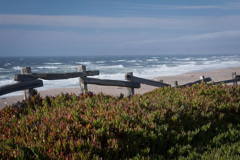 A beach on Point Reyes, California