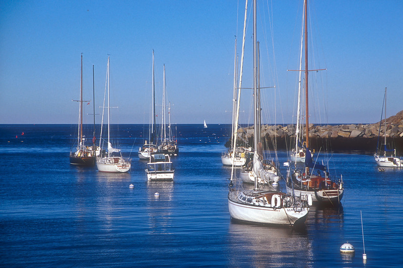 SAE37<br /> Rockport Harbor Sailboats