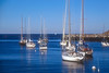 SAE37<br /> Rockport Harbor Sailboats