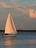 SEA017<br /> Sail Away
