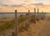 SEA001<br /> Path to the Beach<br /> Cape Cod, Mass.