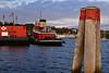 SEA023<br /> Tugs<br /> Belfast, Maine