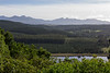 Forest plantations, to mountain range, tranquil, Garden Route, Sedgefield
