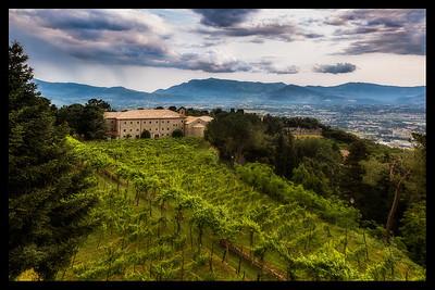 Italy 2013--15