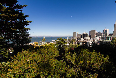View of the city from Coit Tower.
