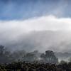 Mist Rolling In ...