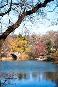 New York, Central Park area