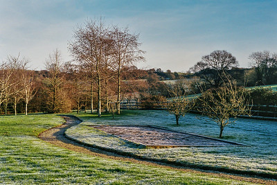 Woodlands in the Frost