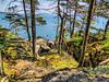 Ocean Path, Acadia National Park, Mt Desert Island ME