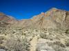 Borrego Palm Canyon, Anza Borrego Desert SP, CA
