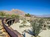 Anza Borrego Desert SP, CA
