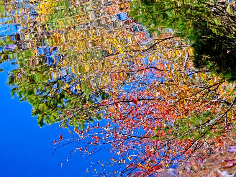 Fernald Pond, Kennebunk ME, Fall 2011