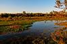 Henricitus City Park, Chester VA