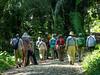Team VICTORY SF Experience, Lancetilla Botanical Gardens, Honduras