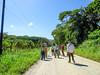 Team VICTORY SF Experience at Lancetilla Botanical Gardens, Honduras