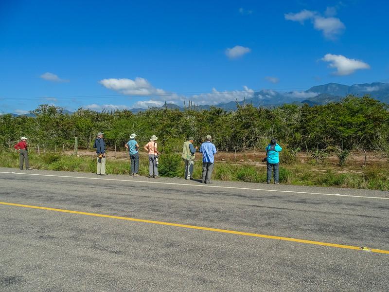 Honduran Emerald Reserve Trip, Lodge at Pico Bonito