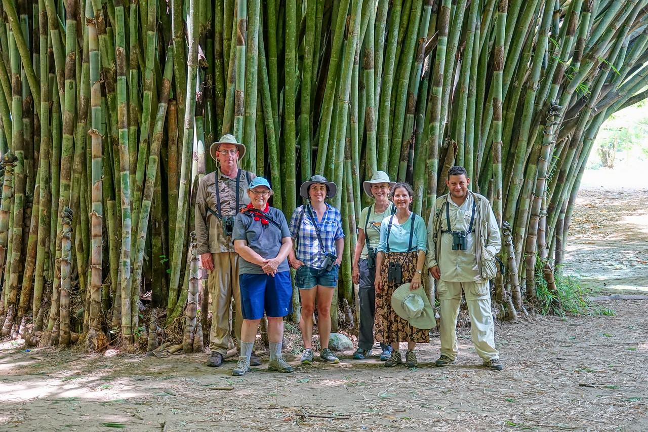 Lancetilla Botanical Gardens, Tela Honduras