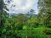 The Lodge at Pico Bonito Honduras
