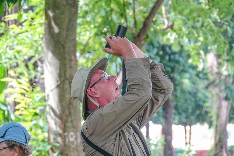 photographing the Black and White Owl, La Ceiba Honduras