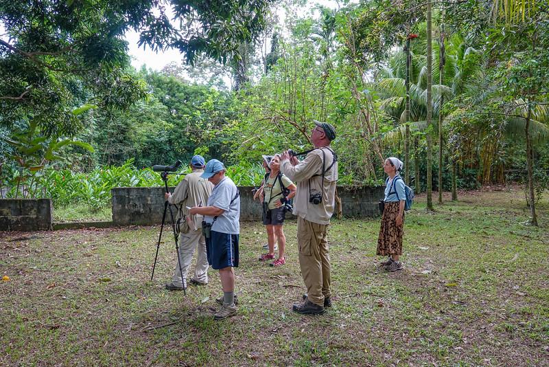 naar the butterfly gardens, The Lodge at Pico Bonito, Honduras