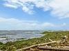 Beach on Carribean, Snyder Canal, Changuinola Panama